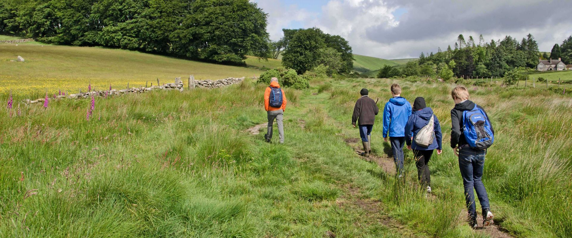 Guests on a guide walk on Dartmoor