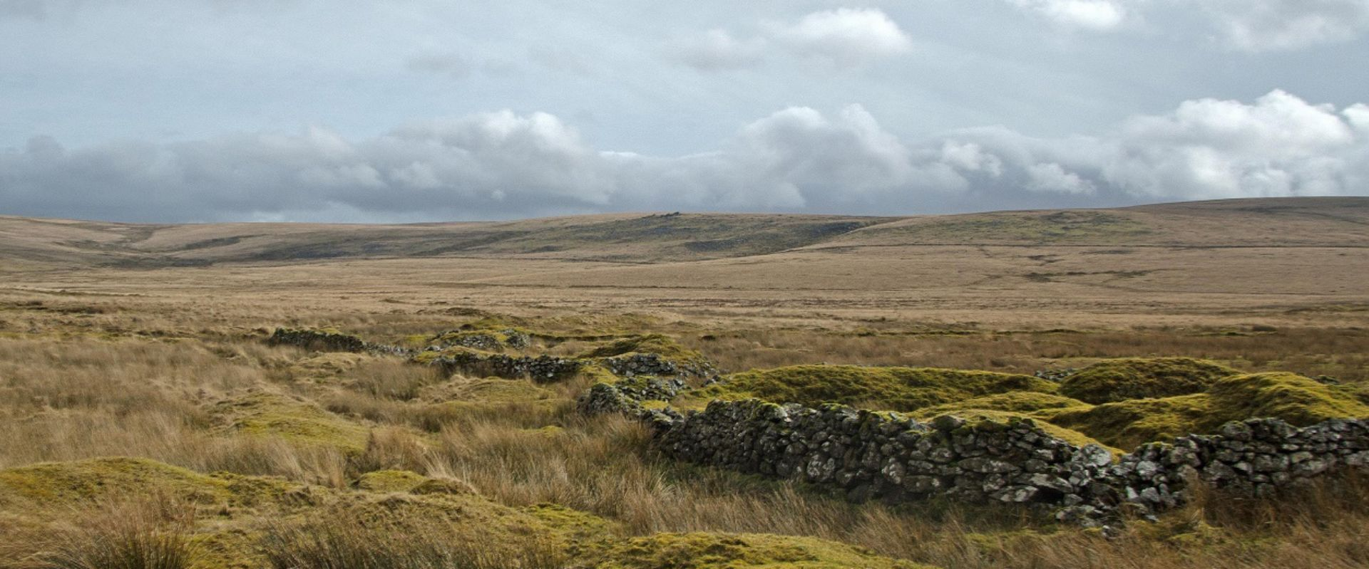 Fox Tor Mire, or Grimpen Mire in the great story!