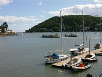Devon Coastal Tour - River Dart