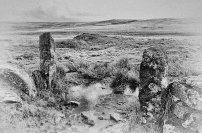 Hound of the Baskervilles tour photo - Fox Tor Mire