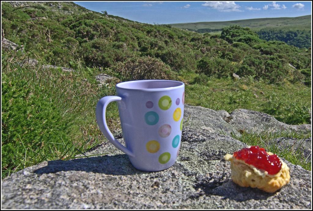 Devonshire-Cream-Tea-Dartmoor-Llamas