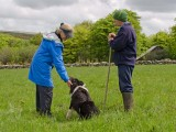 Guest on the Sheepdog Experience