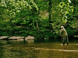 Fly Fishing on the River Dart