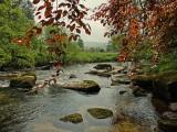 The River Dart, Dartmoor