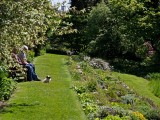 Visit Beautiful Devon Gardens